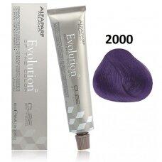Alfaparf Evolution Cube 3D ilgalaikiai plaukų dažai 60 ml 2000 Violet