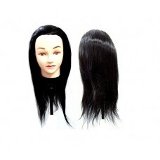 Galva mokymams, juoda, 55 cm