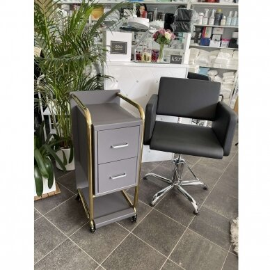 Grožio salono vežimėlis GABBIANO SOLO, pilkas su aukso rėmu 6