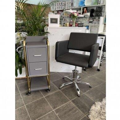 Grožio salono vežimėlis GABBIANO SOLO, pilkas su aukso rėmu 5